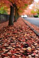 Falling Leaves photo