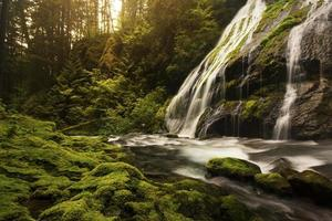 Panther Creek Falls photo