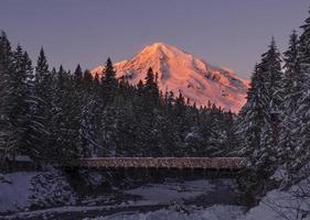 Mt Rainier at Sunset photo