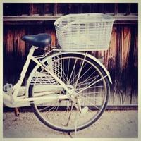 Bicicleta photo