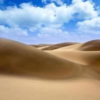 Desert dunes sand in Maspalomas Gran Canaria photo