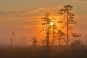 The sun rises photo
