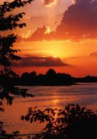 puesta de sol de verano foto
