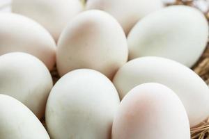 Huevo de pato foto