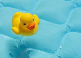 pato de juguete en la piscina foto