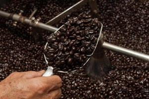 freshly roasted coffee beans in a coffee roaster