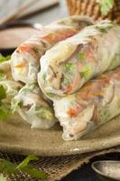 Healthy Vegetarian Spring Rolls photo