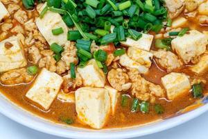 Mabo tofu or mapo doufu the Chinese dish photo