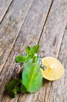 cóctel menta y limón foto