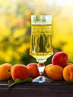 Sweet wine and ripe apricots photo