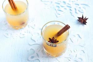 Apple cider rum punch photo