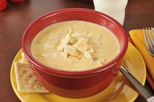 sopa de pollo con queso foto