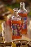 Autumn flavours photo