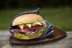Hamburger in the garden photo