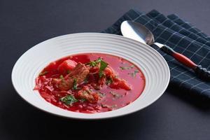 Russian soup photo
