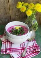 Beetroot soup. Holodnik