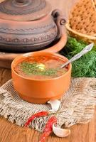 Borsch, soup from a beet and cabbage photo