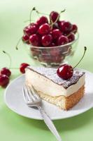 Milk souffle (bird's milk) cake photo