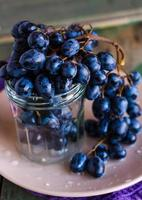 twig of blue grapes in a glass on a plate, vertically photo