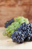 Blue and green grape clusters photo