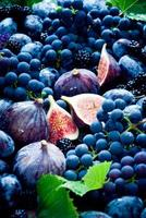 Fresh figs, grapes, prunes and dewberry