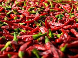 Chili peppers photo