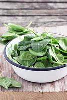 Fresh spinach photo