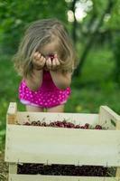 girl with cherries photo