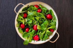 Lettuce and radish photo