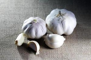 Garlic On Canvas