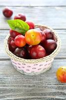 yellow plums in a wicker basket photo
