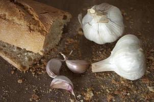 Bread and garlic photo