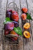 Fresh plum photo