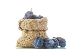 plum in the bag photo