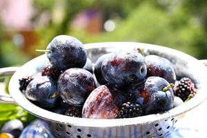 Ripe sweet plums in metal colander, on  nature background