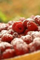 Raspberry pie photo