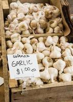Box of white garlic at the market