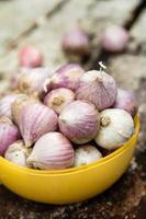 fresh organic garlic photo