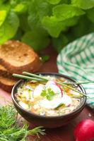 Russian cold soup - okroshka photo