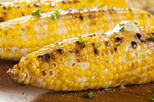Organic Grilled Corn on the Cob photo