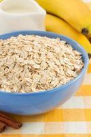 bowl of oat flake photo