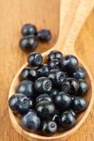 blueberries in spoon photo