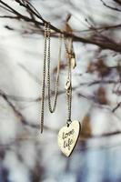 Love Life Symbol Necklace hanging from tree, nature