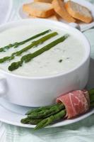 Cream soup of asparagus close-up and croutons.