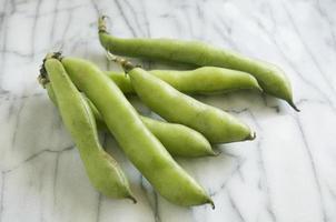 Fava Beans photo