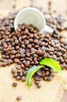 grãos de café com copo branco e folhas verdes