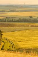 paisaje de verano franconio foto