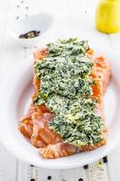 raw fish salmon