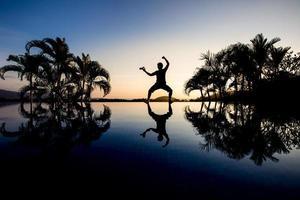 silhouette traveler