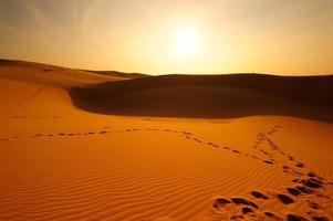 paisaje de desiertos y dunas de arena